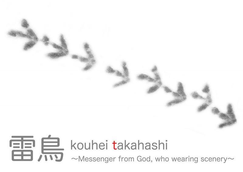 画像1: 写真集 雷鳥 - Messager from God , who wearing scenery - 高橋広平 kouhei takahashi (1)